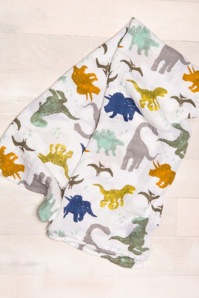 Dino Friends Swaddle