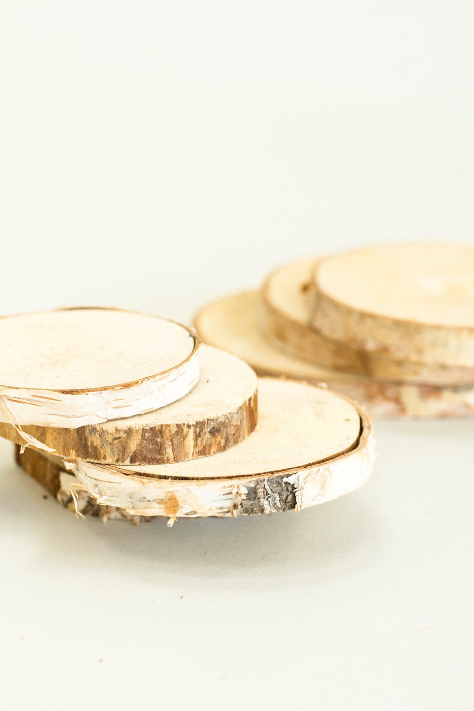 Birch Wood Slices