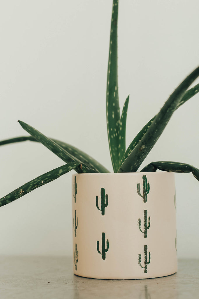 On Point Planter | ROOLEE