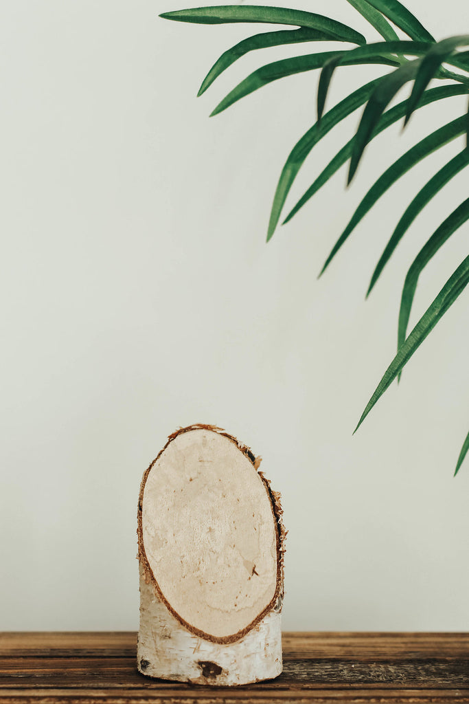 Birch Wood Slice | ROOLEE