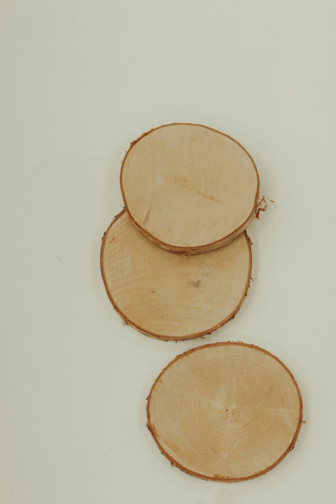 Round Birch Wood Slices | ROOLEE