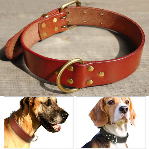 Genuine Leather Dog Collar with Durable D ring & Gold Buckle  S M L XL