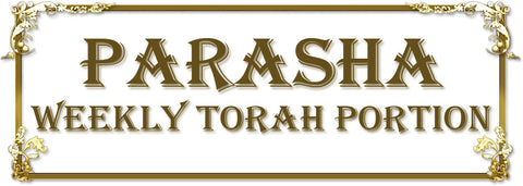 Parasha (Weekly Torah Portion)t Vayikra- KORBAN - Tikkun Of ADAM (RUSS)