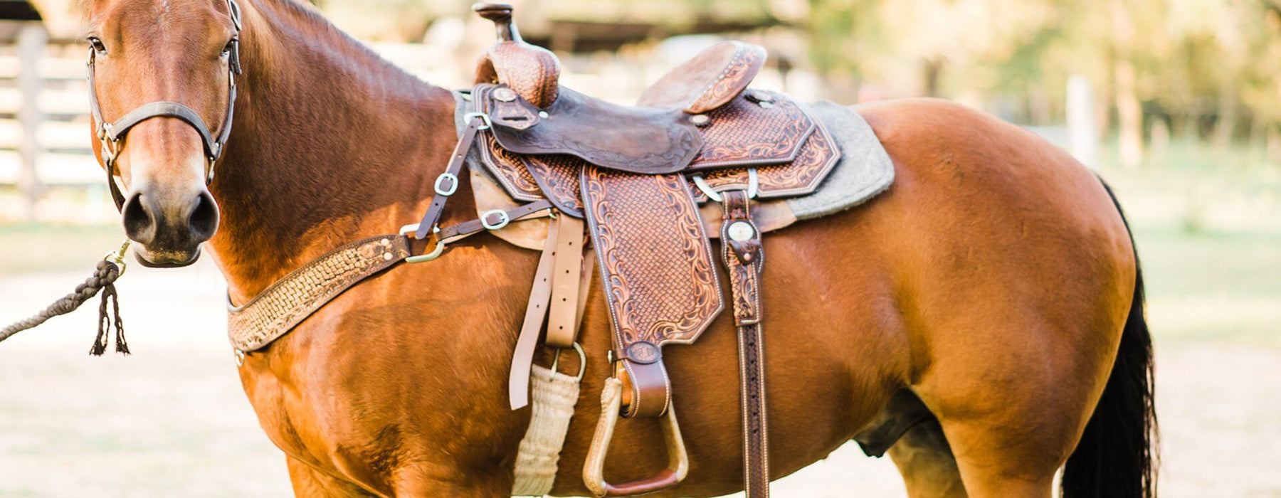 7767b9cd9a83 Double J Saddlery / Custom, Hand-made Leather Products