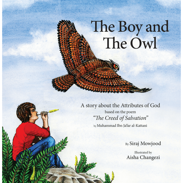 The Boy and The Owl