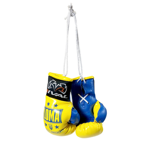 Rival Mini Boxing Gloves LOMA Edition