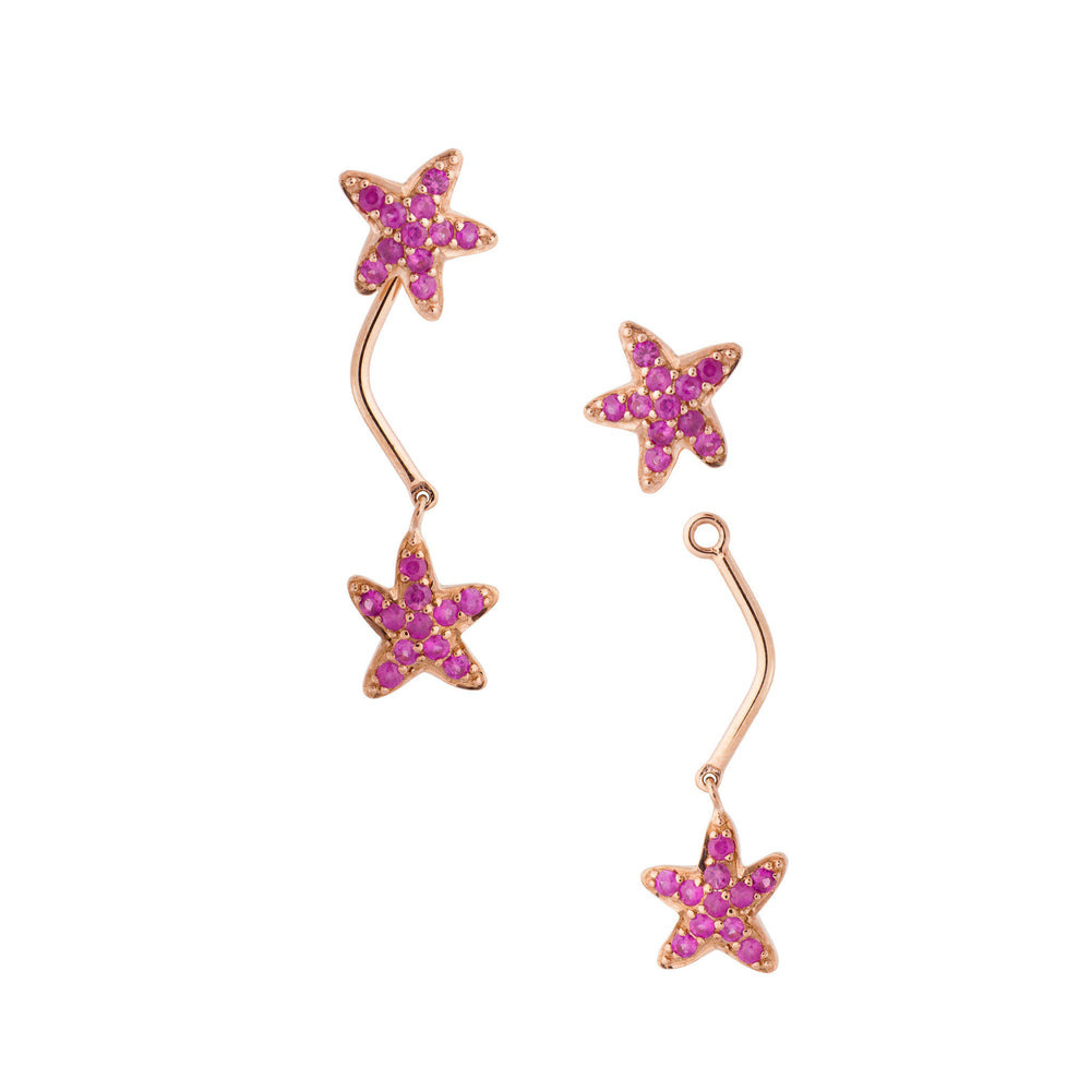 Load image into Gallery viewer, Starfish Earrings