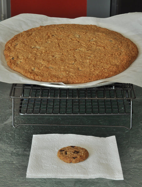 Supersized gluten free cookie made using gfJules gluten free cookie mix
