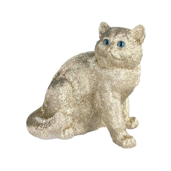 &Klevering - Coinbank exotic shorthair gold