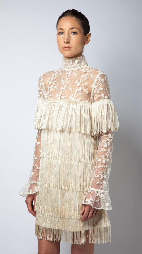 Embroidered Lace Fringe Tulle Dress