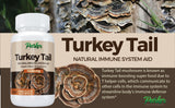 Premium Turkey Tail Mushroom Capsules - Parker Naturals - Journey to a better you.