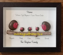 Robin Family Frame - Hand Painted Stone Picture (personalised)