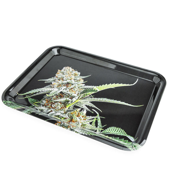 420 Science x Seattle High Group Rolling Tray - Mystery Cola - a Rolling Trays, from 420 Science - find at 420Science.com