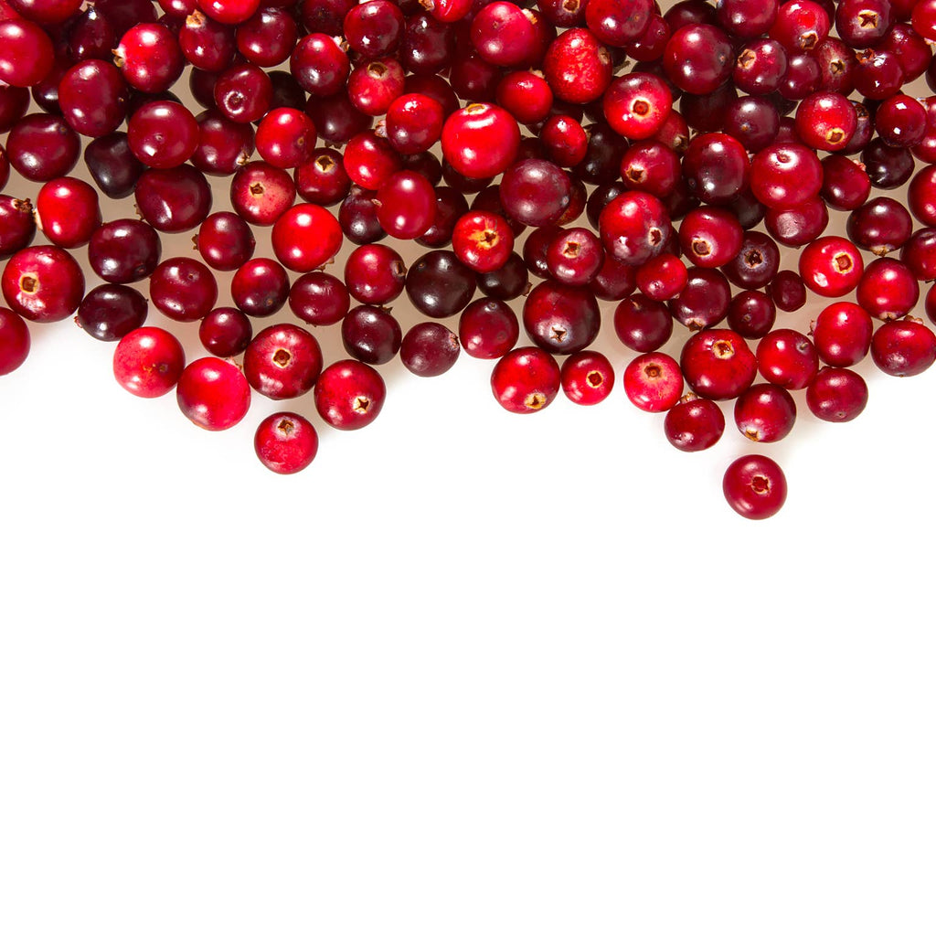 Cranberry Conserve - 6 oz. - dolly mama boutique