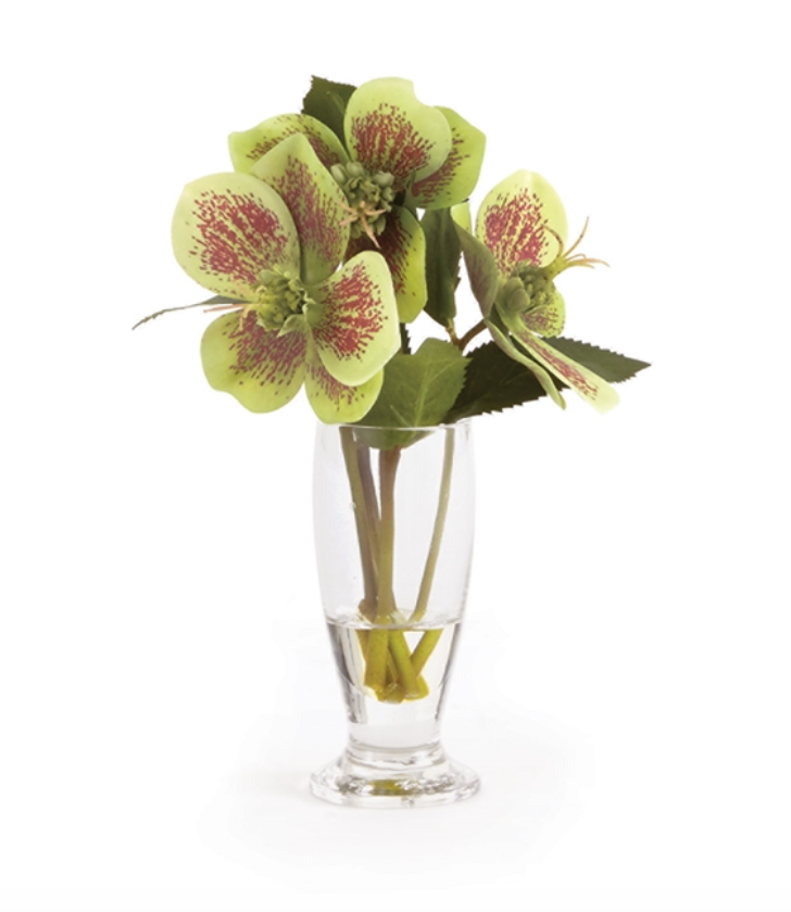 "HELLEBORES ARRANGEMENT IN URN 7"" - dolly mama boutique"
