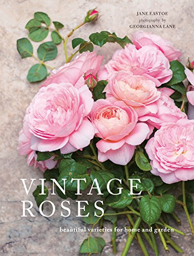 Vintage Roses Book - dolly mama boutique
