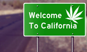 Recreational Marijuana is now Legal in California!