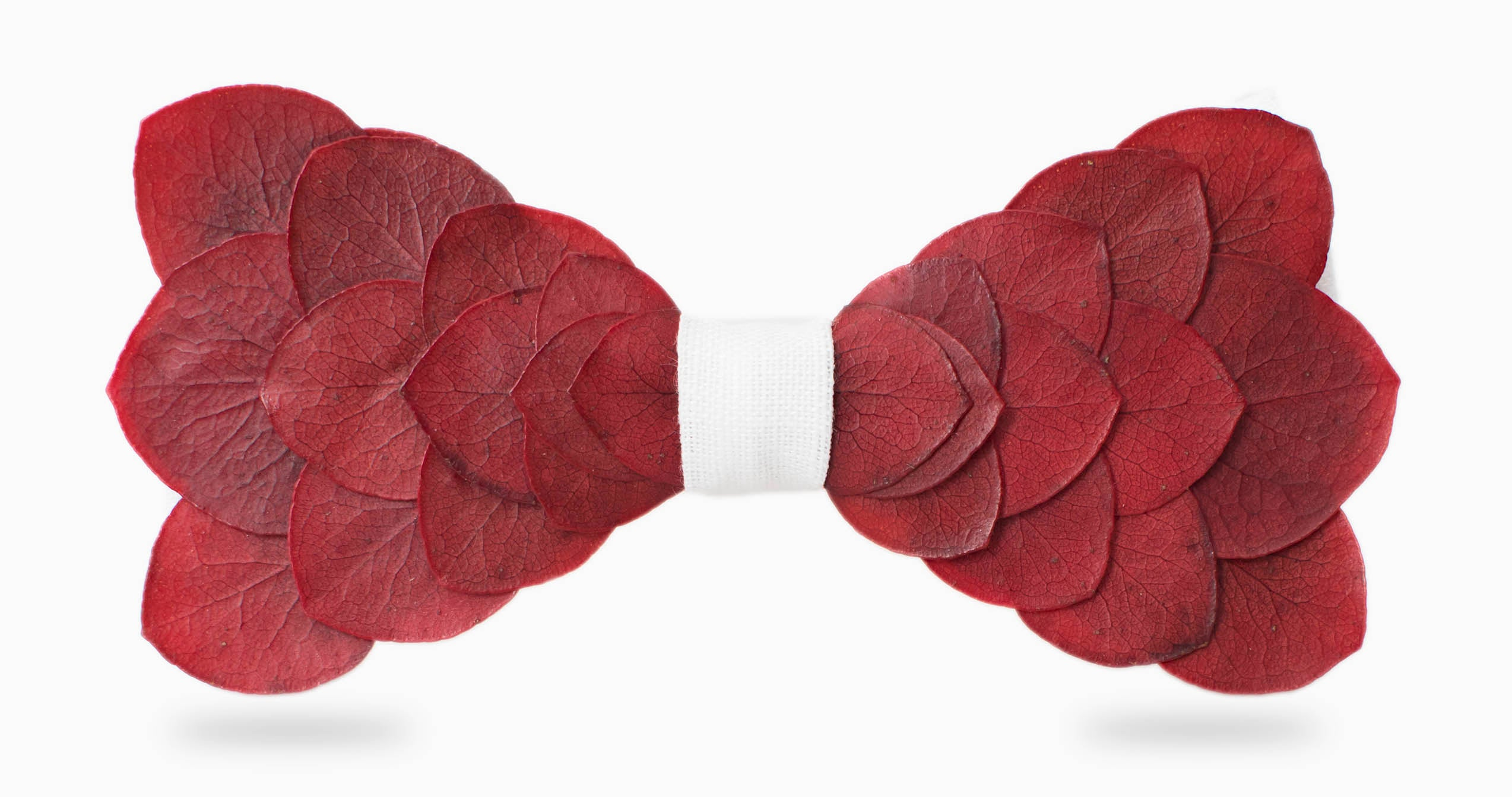Red eucalyptus with linen bow tie