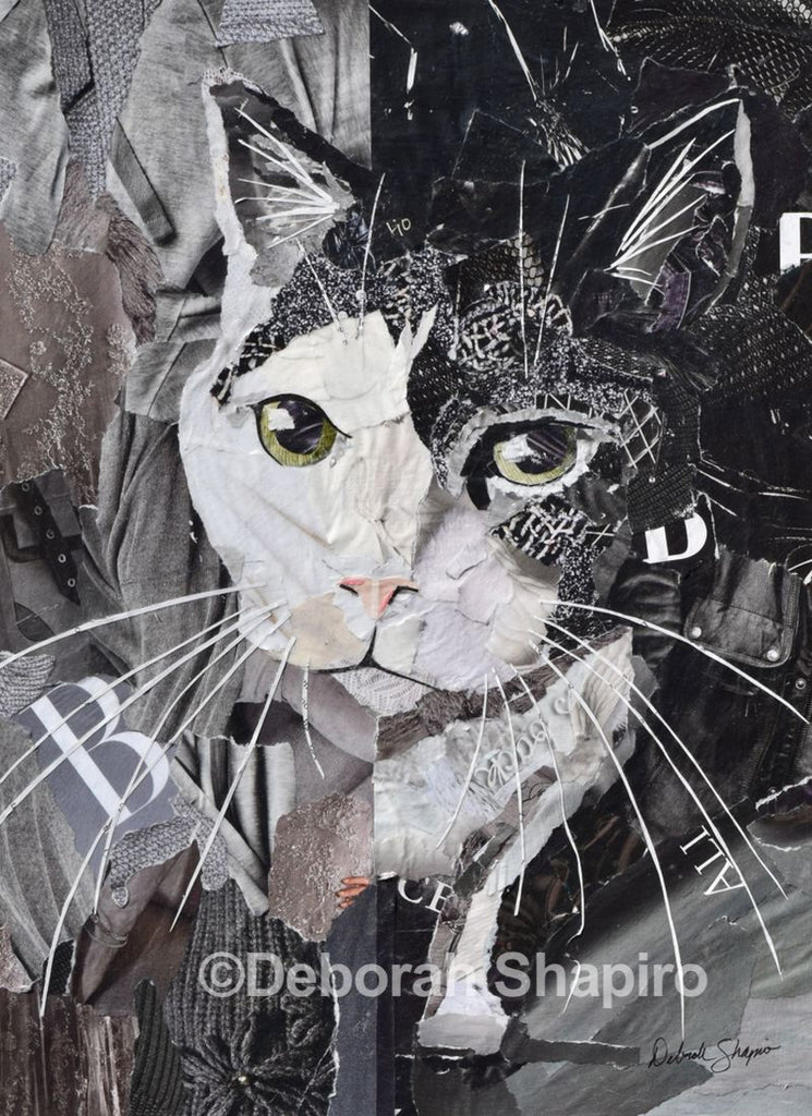 cat magazine collage