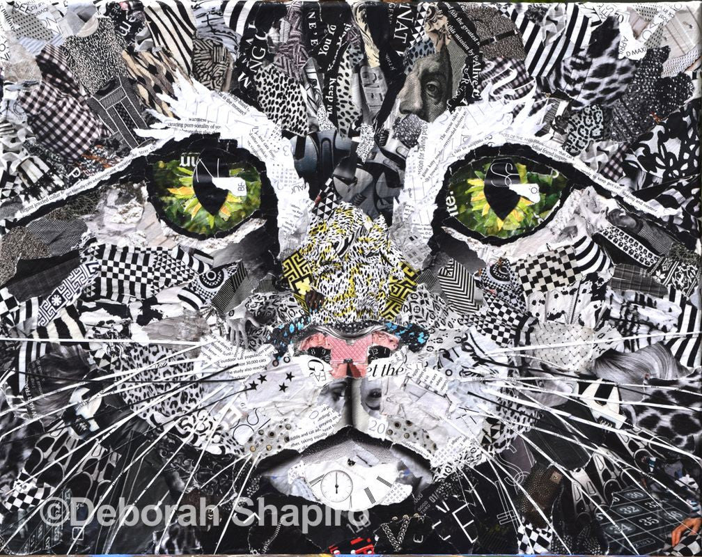 Cat Wall Art Deborah Shapiro Art