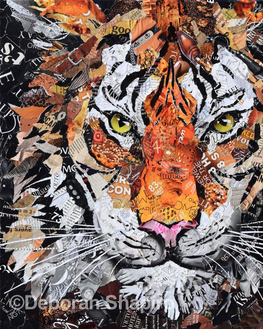 Tiger Art Prints For Sale Deborah Shapiro Art