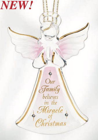 Our Family Believes in the Miracle of Christmas ~ W3 123-MC