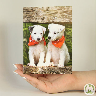 Adorable Twins Funny Greeting Card MemoryTag Greeting Cards-Greeting Card-MemoryTag Greeting Cards