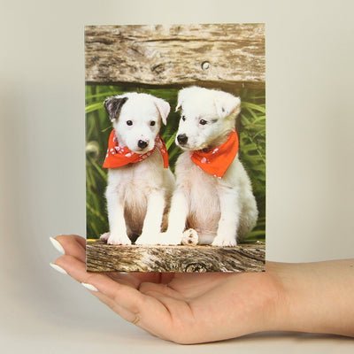 Adorable Twins-Greeting Card-MemoryTag Greeting Cards