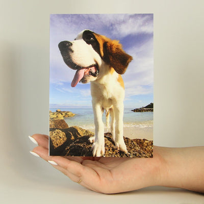 Adventure Dog-Greeting Card-MemoryTag Greeting Cards