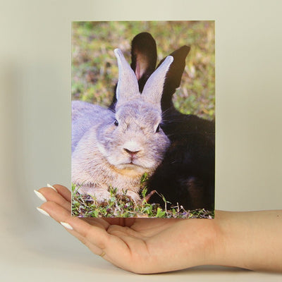 Bunny Love-Greeting Card-MemoryTag Greeting Cards