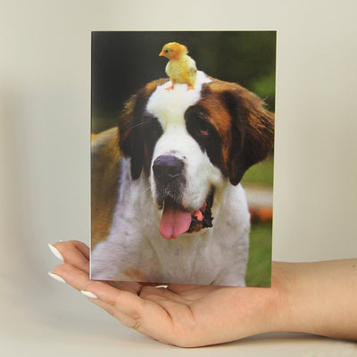 Chick on Dog's Head-Greeting Card-MemoryTag Greeting Cards