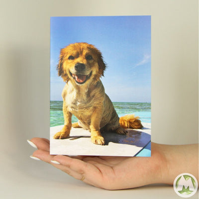 Dog on Surfboard Funny Greeting Card MemoryTag Greeting Cards-Greeting Card-MemoryTag Greeting Cards