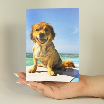 Dog on Surfboard-Greeting Card-MemoryTag Greeting Cards