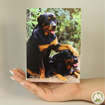 Doggy Friends Funny Greeting Card MemoryTag Greeting Cards-Greeting Card-MemoryTag Greeting Cards