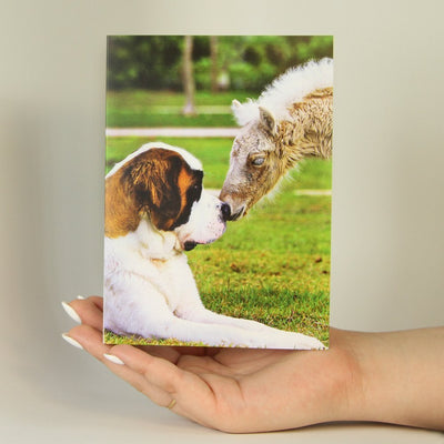 Friends-Greeting Card-MemoryTag Greeting Cards