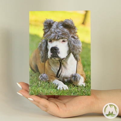 Furry Hat Funny Greeting Card MemoryTag Greeting Cards-Greeting Card-MemoryTag Greeting Cards