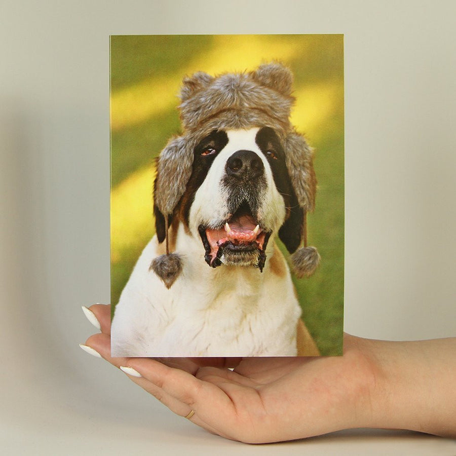 Want To Send A Funny Animal Greeting Card That Shows Your Awesome