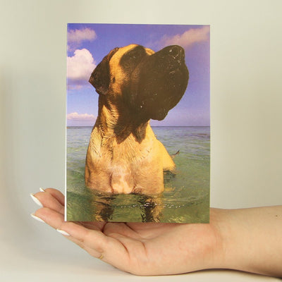 Out For a Dip-Greeting Card-MemoryTag Greeting Cards