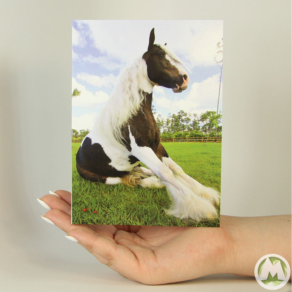 Pretty horse funny greeting card memorytag greeting cards pretty horse funny greeting card memorytag greeting cards greeting card memorytag greeting cards m4hsunfo