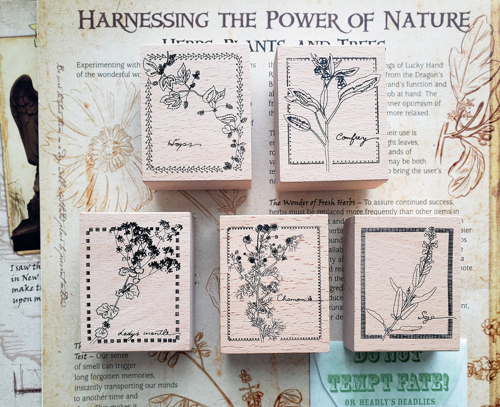 Plants Etchings Series Wooden Stamps