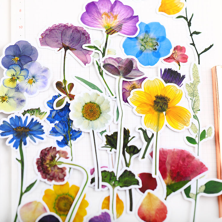 Dried Flowers Stickers Pack