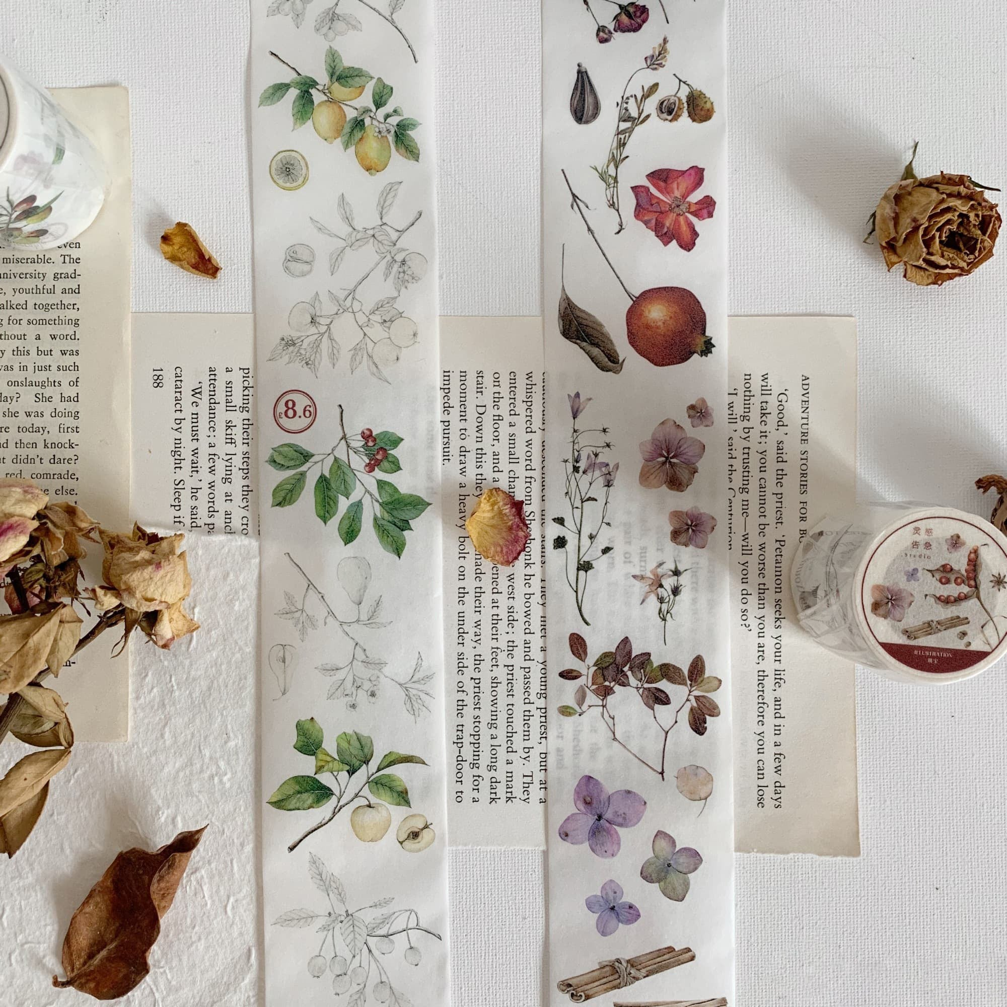 Vintage Flower Specimen Washi Tape