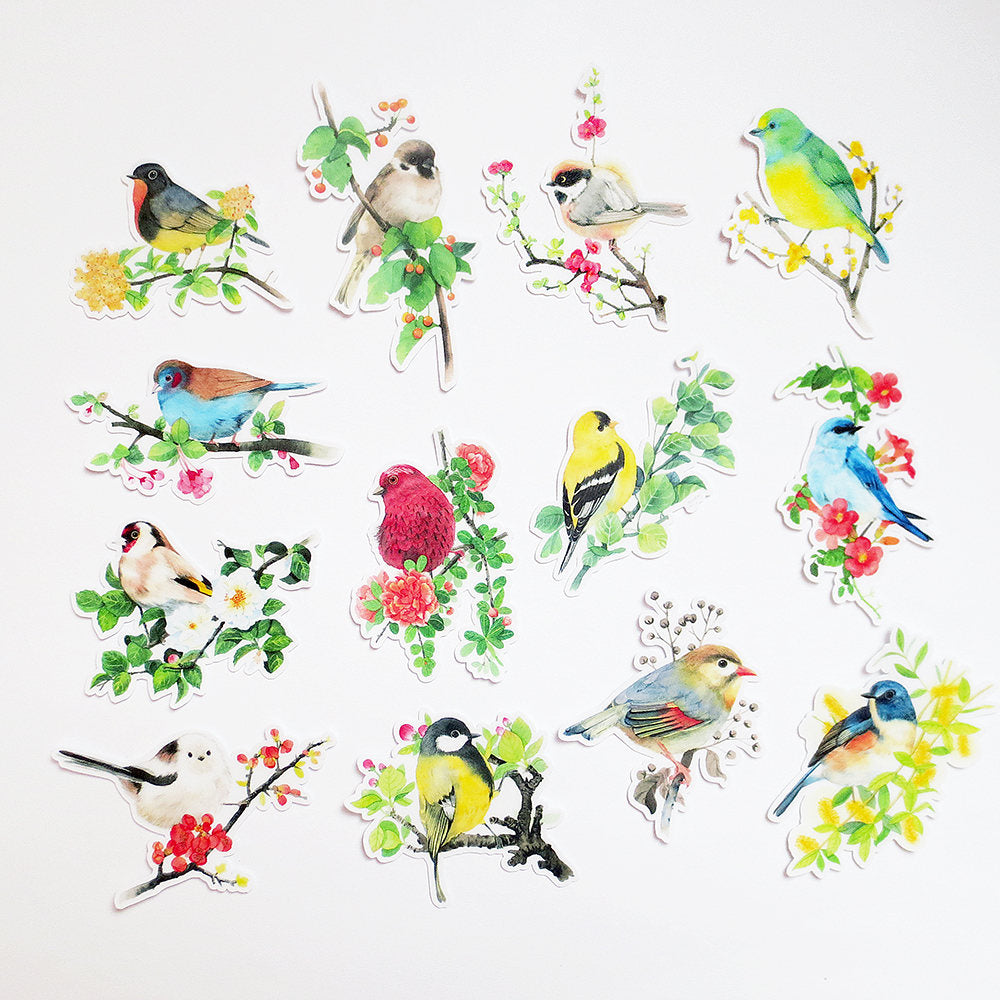 Birds Sticker Pack A