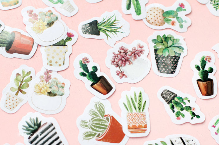Plants Sticker Set,  Succulent Sticker, Floral Stickers Pack, Life Log Stickers, Planner Sticker Pack