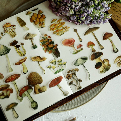 100 PCS Translucent Mushroom Stickers Pack,  Vintage Fungi Ephemera Sticker Set, Junk Journal, Mushrooms, Planner, Scrapbook Stickers