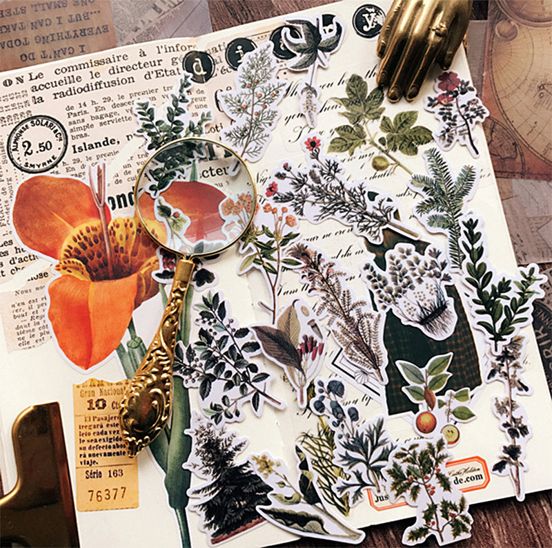 21 PCS Vintage Plants Stickers Pack, Translucent Botanical Sticker Sack, Planner, Scrapbooking, Plants, Garden, Floral, Junk Journal