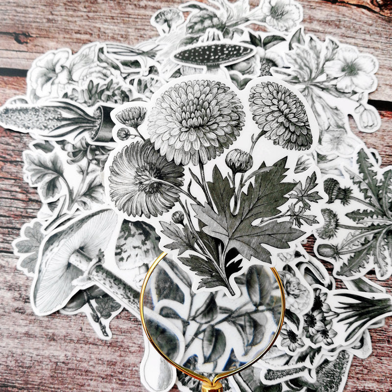 46 PCS Vintage Botanical Illustration Pack, Monochrome, Vinyl Flowers Sticker Sack, Planner, Scrapbooking, Plants, Garden, Ephemera