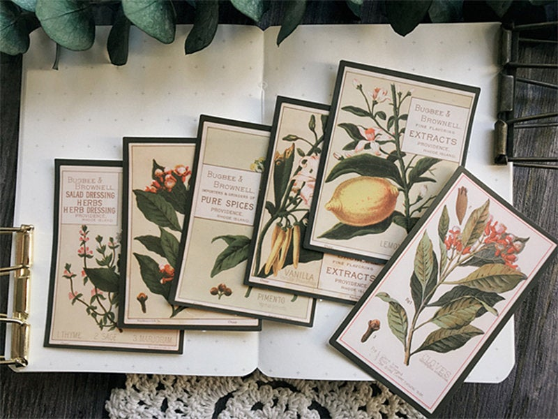 Botany Encyclopedia Stickers Pack