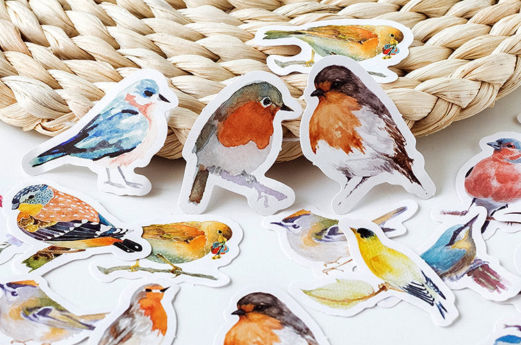 Birds Box Sticker Set