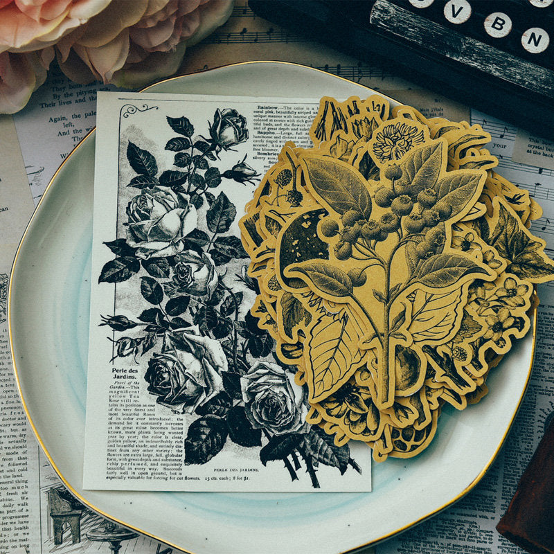 Kraft Botanical Illustration Stickers Pack